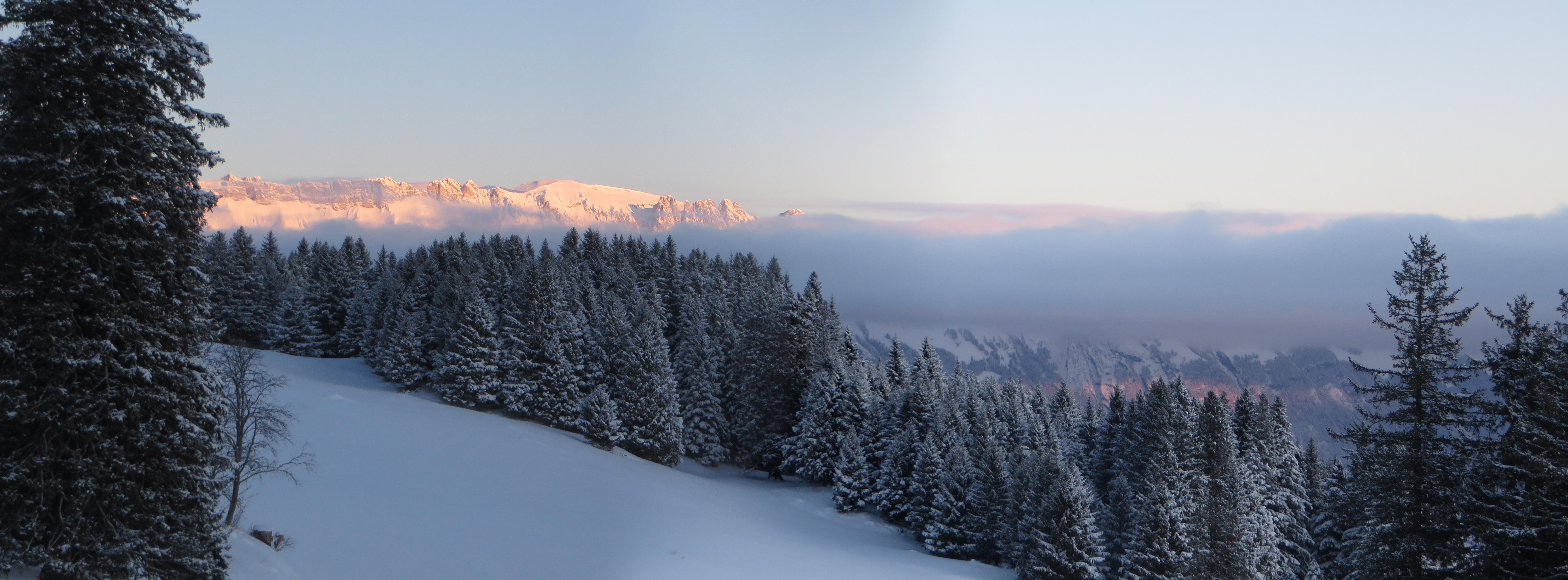 IMG_1587 Panorama